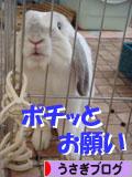 2009-02-05 005バナ.jpg