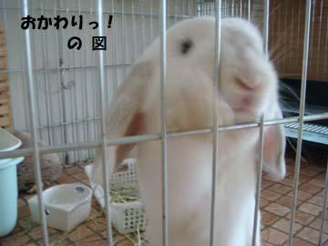 2009-08-12 027a.jpg