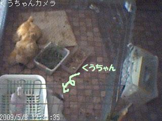 snap-4a.jpg